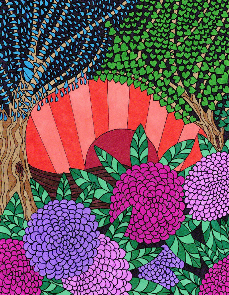 Coloring Books - Adult Coloring Pages