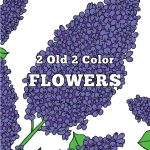 New 2 Old 2 Color Flower Adult Coloring Book